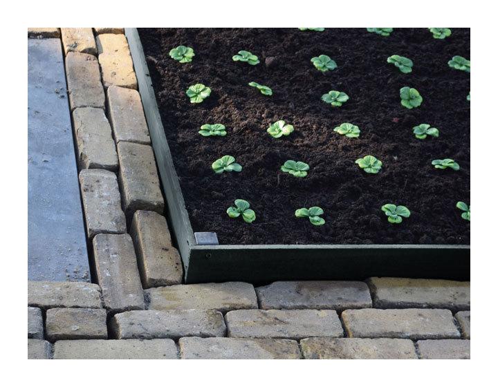 jardin bordure de jardin en pvc borderfix planter h14cm x l2m nature marque nature ref. Black Bedroom Furniture Sets. Home Design Ideas